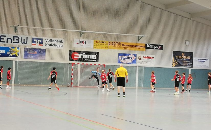 mJD-LL-RNT: JSG Rot-Malsch vs SG Leutershausen 19:19 (10:10)